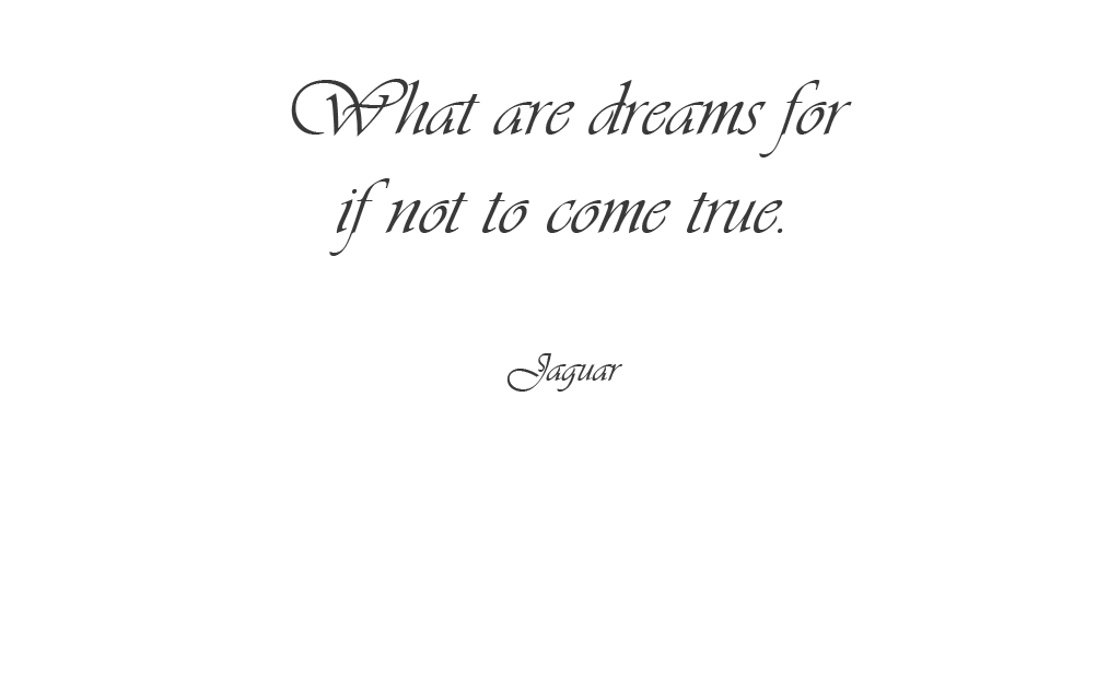 What are dreams for if not to come true.